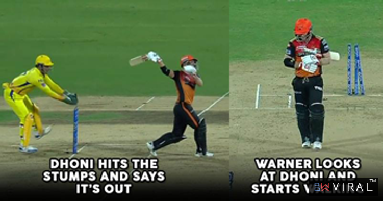 MS Dhoni Stumps David Warner With A Lightning Speed. Video Is A Delight For Fans