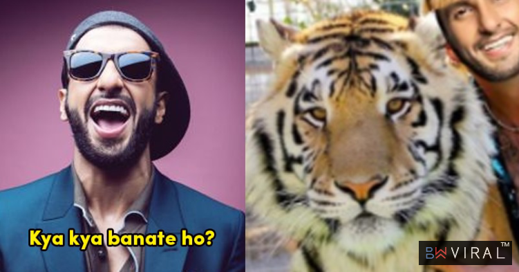 Ranveer Singh Wants To Meet The Guy Who Made His Tiger King Meme